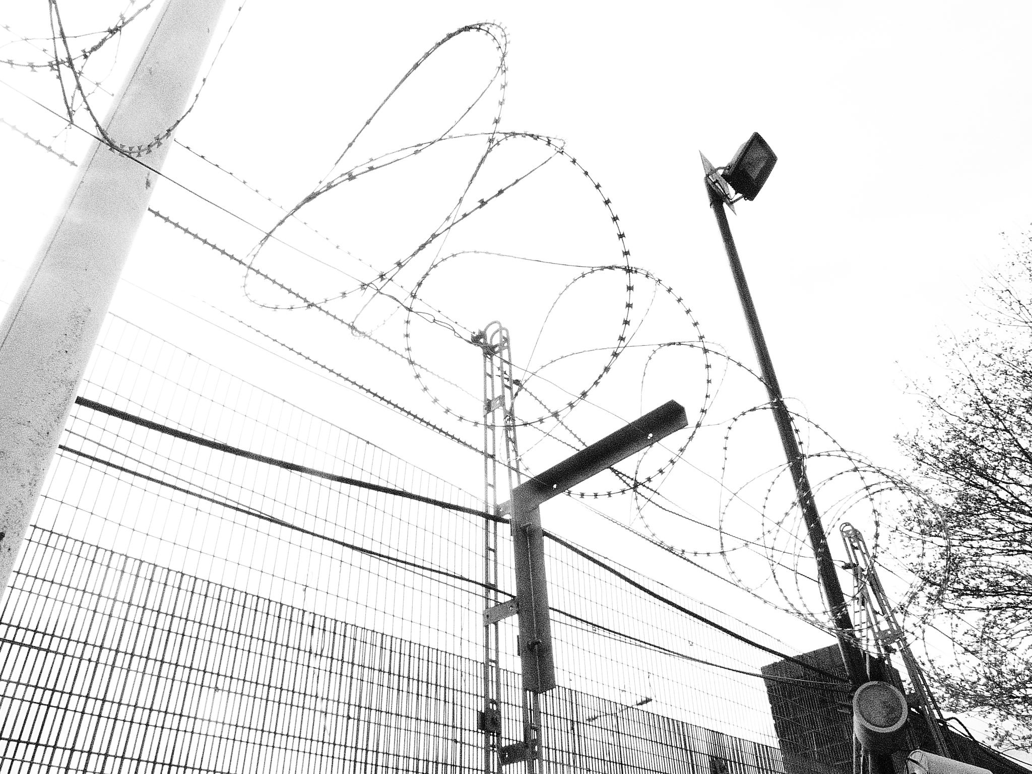 Barbed wire, Flickr under creative comms licence, Terry Freeman